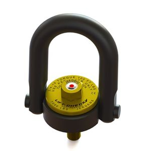 Picture for category Hoist Ring - Lift-Check™ - Metric